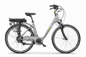 EcoBike Traffic Grey 28""